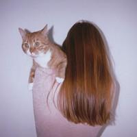 猫系情侣头像一左一右
