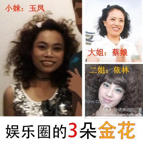 蔡依林和罗玉凤是双胞胎吗图片