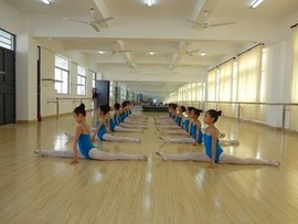 学校舞蹈队介绍