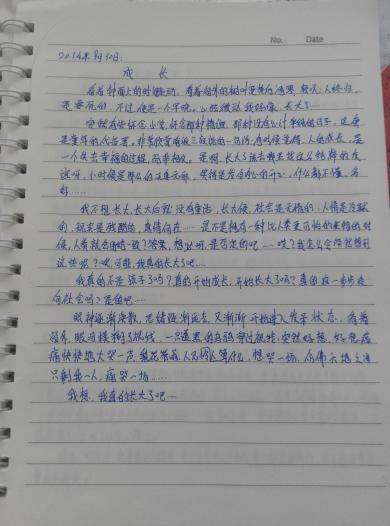 300字左右随笔作文_300字左右初中随笔重庆市2014高招生考试暨年范文图片