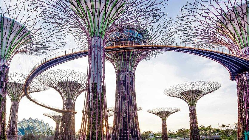新加坡滨海湾花园介绍