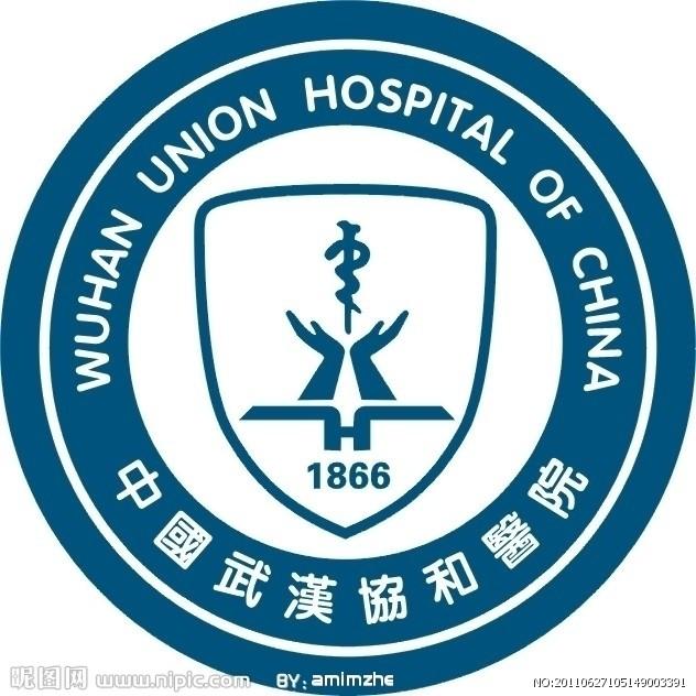 武汉市中心医院图标下载,邯郸市中心医院图片,咸阳市中心医院标志