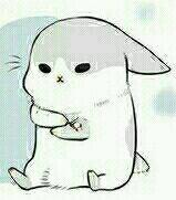 有知道微信上的这个兔子表情包叫什么吗? 一年前的表情包了图片