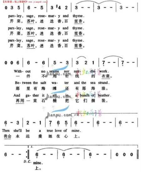 斯卡布罗集市中文简谱图片