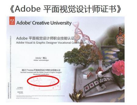 谁见过adobe平面视觉设计师证书图片