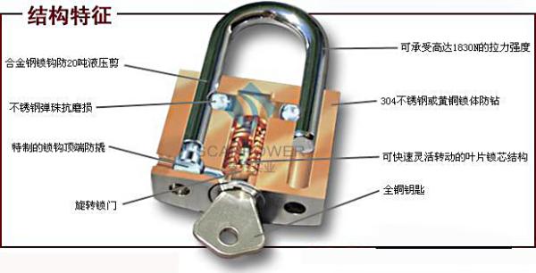 谁知道这种锁的内部构造 有图最好.和一般的弹子锁有什么区别