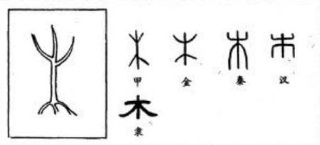 汉字演变过程
