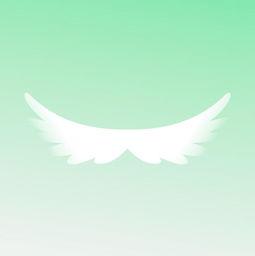 《隐形的翅膀》是谁唱的?歌词是什么?