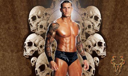 图片50 2010-08-29 我想求wwe巨星兰迪奥顿的后背肩胛骨位置的纹身图片