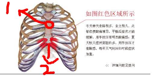 肋骨骨折多久能好