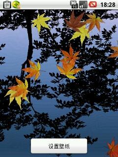 枫叶水波纹动态壁纸